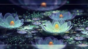 Lotus-Pond-fantasy-37302065-1600-900-1140x641[1]