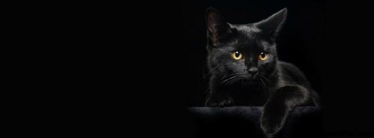 siyah[1]