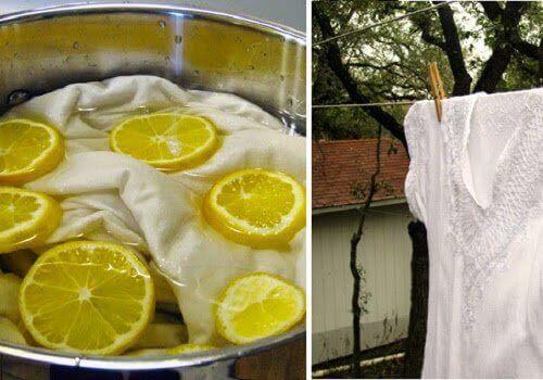 1-limon-ve-çamaşır[1]
