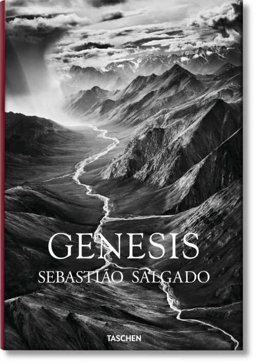 salgado_genesis_fo_gb_3d_05767_1503121803_id_908334[1]