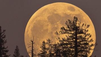 14-kasim-gecesi-son-70-yilin-en-buyuk-dolunay-i-super-ay-geliyor-14784571221