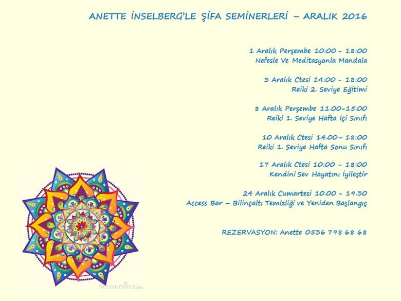 aralik-2016