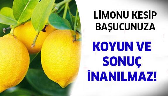 birkac_dilim_limonu_basucunuza_koyun_ve_h1498_1eb411-575x3301