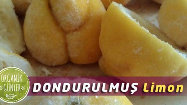 dondurulmus-limon-728x4101