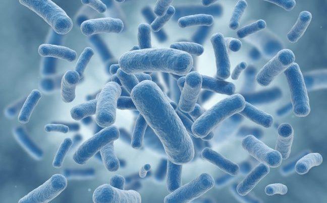 probiyotik-tuketimi-psikolojiyi-nasil-etkiliyor-e14852729811501