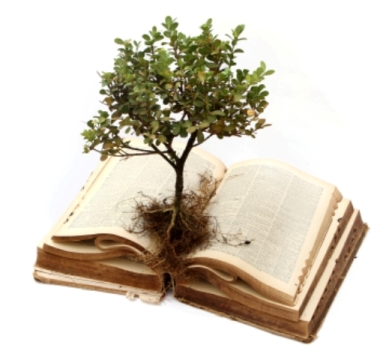 bilgi-toplumunda-kulturel-sistem-cem-cengiz-yilmaz1