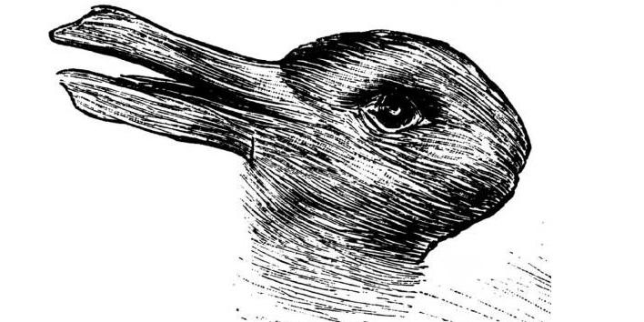 ördek-ve-tavşan-1[1]