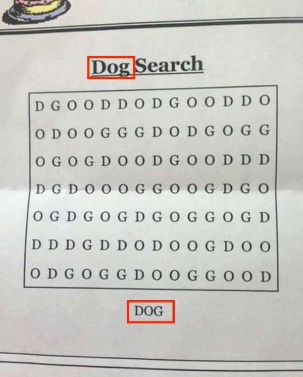 dog2[1]