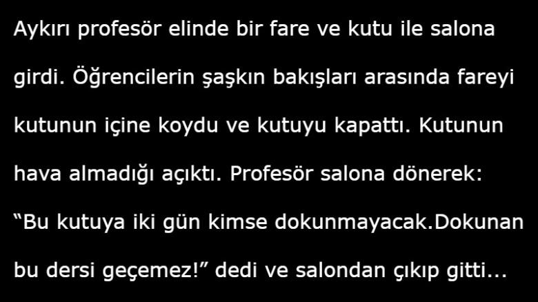 profesor-ve-fare-hikayesi[1]
