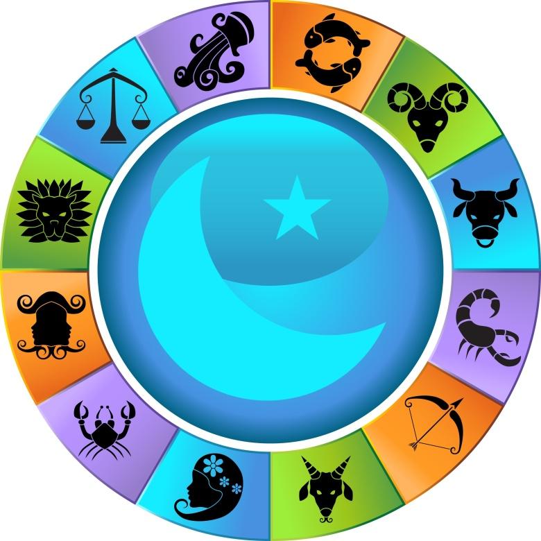 education_wheel