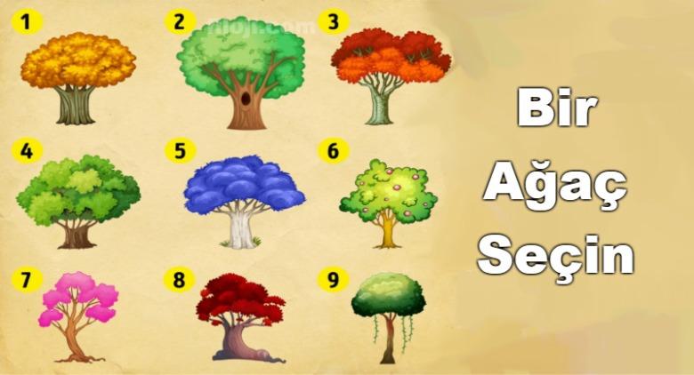 ağaçlar-secin-test[1]
