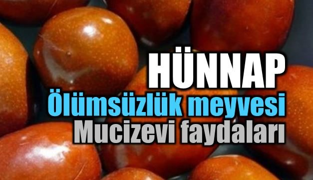 olumsuzluk-meyvesi-hunnap-b[1]