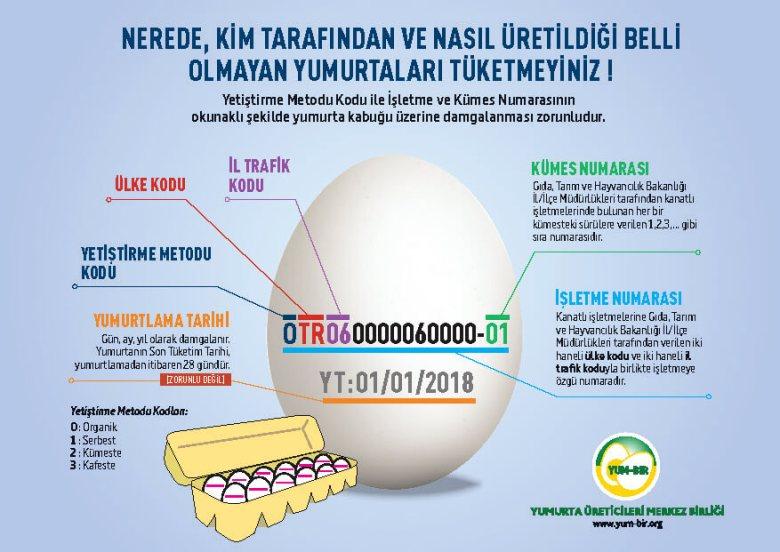 yumurta-kodu-4[1]