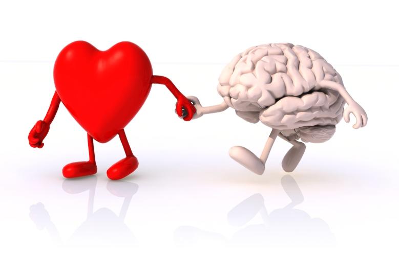 kalp-beyin[1]