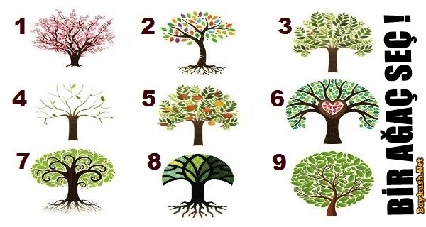 anette inselberg ağaç kişilik test