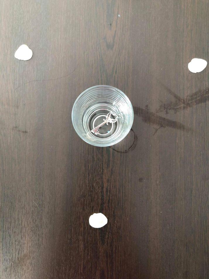 anette inselberg dolunayda kapalı kapıları açma ritüeli