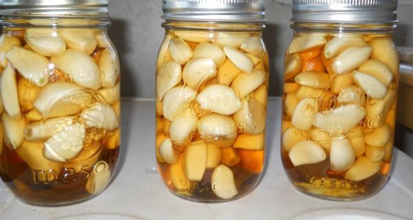 anette inselberg sarımsak sağlık doğal antibiyotik