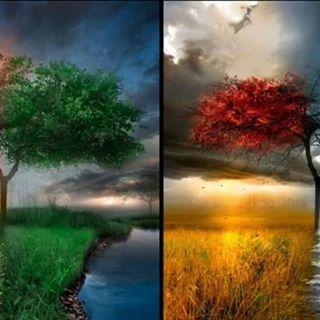 anette inselberg dört mevsim