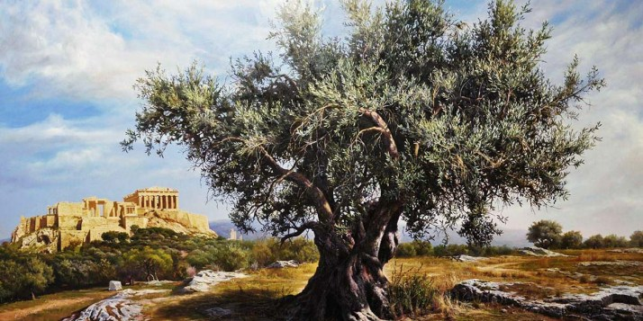 anette inselberg zeytin ağacı