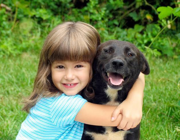 anette inselberg neden köpekler daha az yaşar